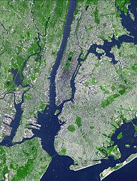 Aster newyorkcity lrg.jpg