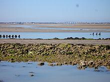 Photographie du passage du Gois et du pont de Noirmoutier, vus du côté Nord