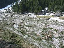 photo d'une vallée après une avalanche, la coulée de neige est rendue verte par les branches de sapins arrachées, une maison est à moitié ensevelie sous la neige