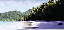 A tropical beach with sand, surf and trees. Some bathers enjoy the blue waters.