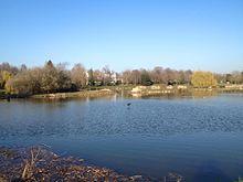 Vue sur un lac, bordé par des arbres sur le fond.