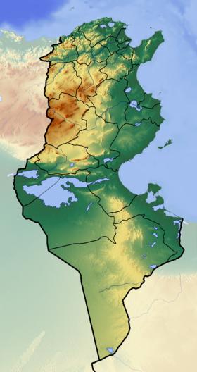 (Voir situation sur carte: Tunisie (relief))