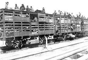 Des wagons en bois, transportant des personnes y compris sur le toit.