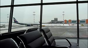 Файл:Sheremetyevo Intertnational airport.webm